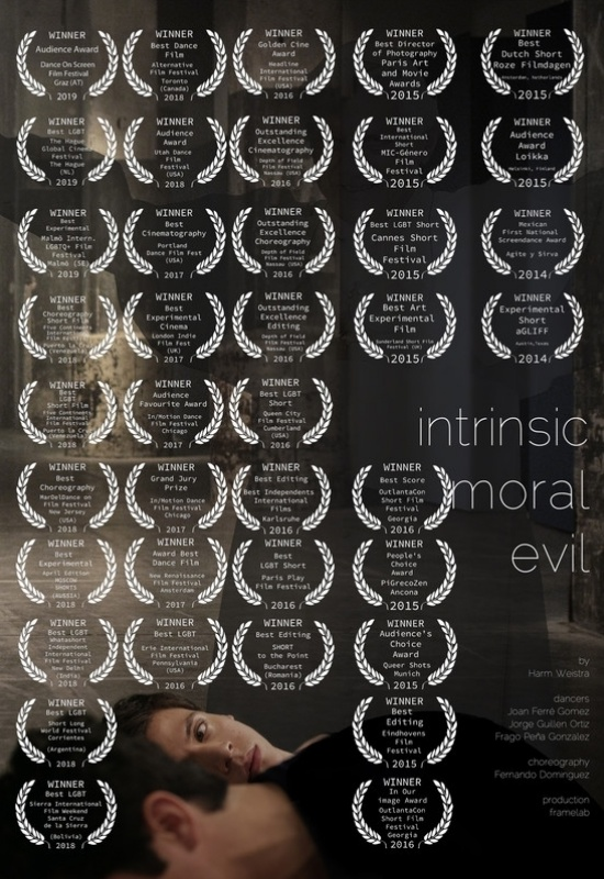 Intrinsic Moral Evil-poster